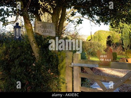 Eggs for sale sign outside cottage in country in England Hampshire UK United Kingdom England United Kingdom - Stock Photo