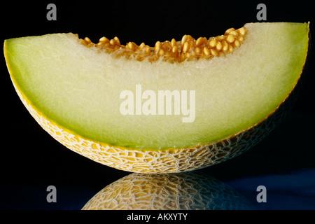 Sugar melon