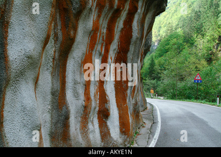 Red litchen on the surface of a shotcrete wall next to a street, Beluno, Italy - Stock Photo