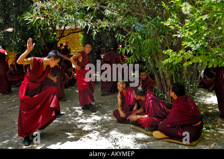 The famous discussin monks at the Ganden convent (4300m) near Lhasa, Tibet - Stock Photo