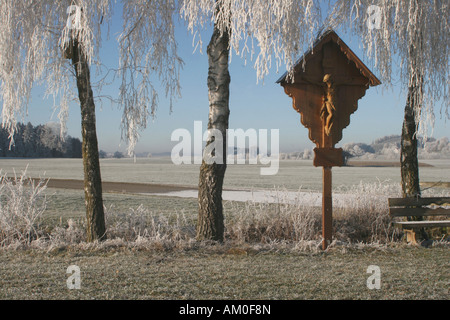 Cross between frosted birches, Allgaeu, Germany - Stock Photo