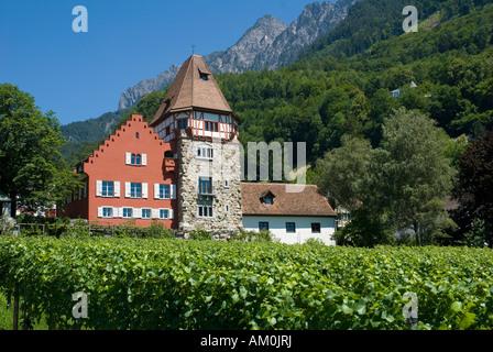 Red House, Vaduz, Liechtenstein - Stock Photo