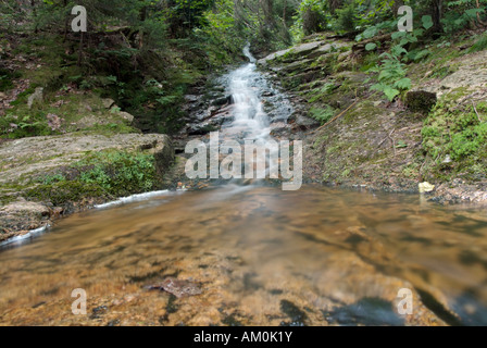 Kedron Flume located along Kedron Flume Trail in the White Mountains New Hampshire USA which is part of New England - Stock Photo