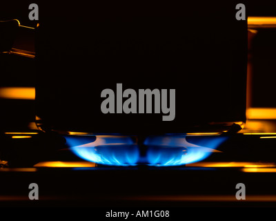 Gas flame on a cooker hob - Stock Photo
