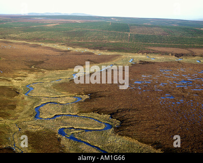 Flow Country Peatland Caithness Scotland Threatened by Blanket Conifer Planting as a Tax Dodge in 1980s - Stock Photo