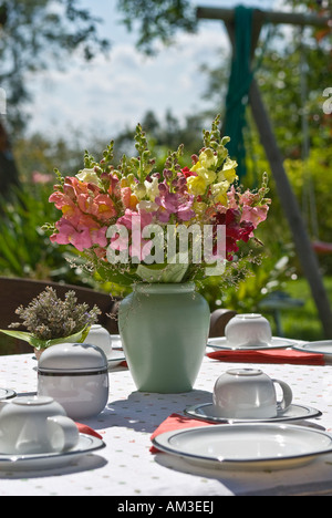 Well-laid garden table with a bunch of snapdragons (Antirrhinum) - Stock Photo