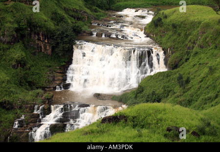 St Clair falls one of Sri Lanka s most spectacular hill country waterfalls and the widest - Stock Photo