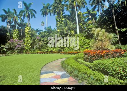 Sunken Gardens Florida s foremost botanical gardens St Petersburg ...