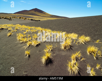 The Volcanic Landscape of Payunia Provincial Reserve in the Malargue Department of Mendoza Province, Argentina - Stock Photo