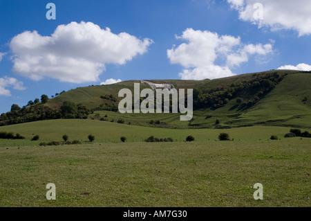 Westbury White Horse Wiltshire Downs - Stock Photo