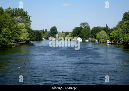 View from Henley weir footbridge looking downstream towards Henley town - Stock Photo