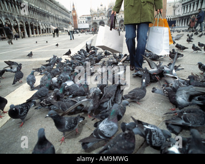 Woman with shopping bags walking through group of pigeons. - Stock Photo