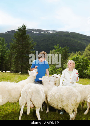 Young girl and young boy smiling and feeding herd of sheep in a field. - Stock Photo