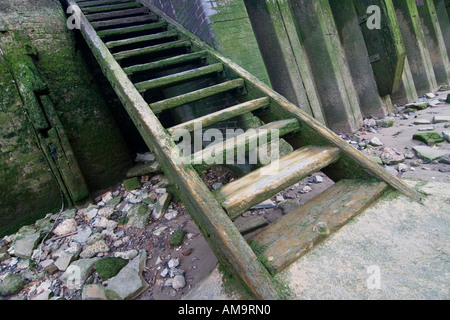 Battered old wooden stairs from river bed to riverside at low tide River Thames London - Stock Photo