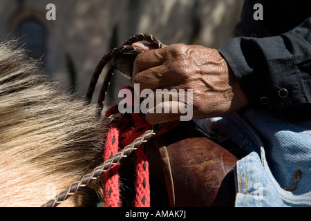 Detail of a man on horseback holding the reins - Stock Photo