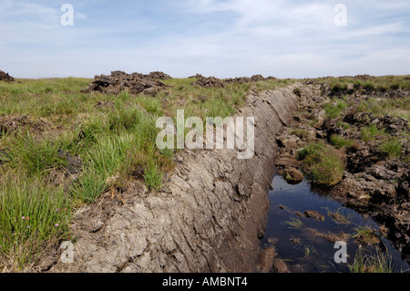 Peat cut and left to dry, County Mayo, Ireland - Stock Photo