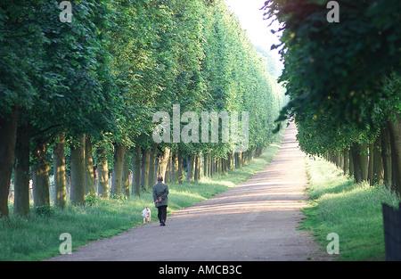 Versailles France - Stock Photo