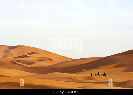 A berber man leading tourists on camels through the sand dunes of Erg Chebbi on the periphery of the Sahara desert - Stock Photo