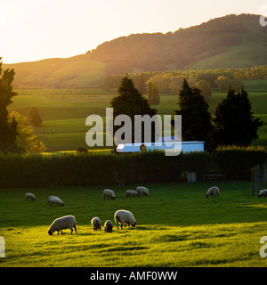 camper van in the middle of the countryside - Stock Photo
