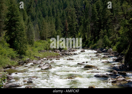 The East Fork of the South Fork of the Salmon River near Yellow Pine, Idaho. - Stock Photo