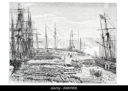 lumber trade pacific steam sail ship sailing mast dock harbour timber log raw material horse cart wagon supply export - Stock Photo