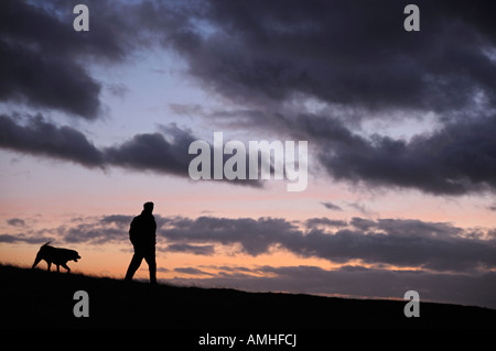 Man Walking His Dog Through a Field Silhouetted by the Dusk Sky - Stock Photo