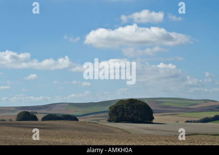 View southwest from overton hill on the ridgeway national trail near avebury