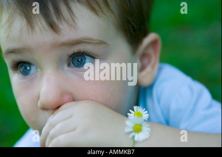 Young child with daisy chain around his wrist - Stock Photo