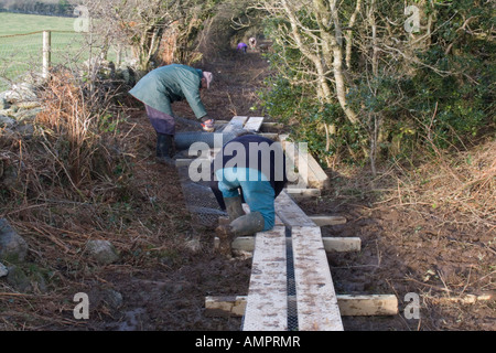 ISLE OF ANGLESEY NORTH WALES UK Two male volunteers cutting and stapling wire netting onto a new section of boardwalk - Stock Photo