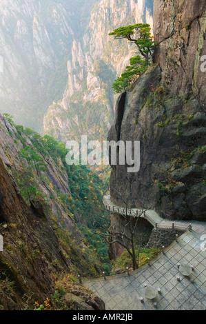 Footpath, White Cloud Scenic Area, Anhui Province, China - Stock Photo