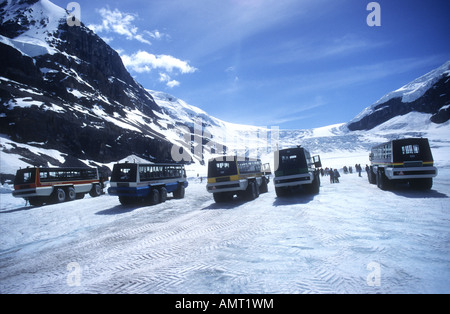 Tourist coaches wait for their passengers on the Athabasca Glacier Canadian Rockies - Stock Photo