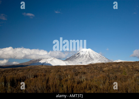 View of a snow covered Mount Ngauruhoe volcano, New Zealand - Stock Photo