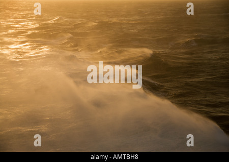 Rough seas by light of rising sun at daybreak with flying spray from cruise ship in heavy ocean swell in Pacific - Stock Photo
