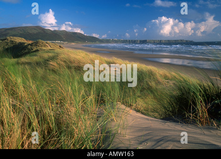 Rhossili Bay from Llangennith Burrows Gower South Wales - Stock Photo