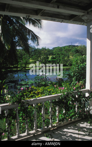 View of Lilies on Pond from Porch of Cotton House Hotel in Mustique in St Vincent and Grenadines - Stock Photo
