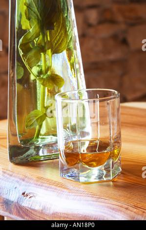 Rakija grappa type spirit flavoured with herbs backlit, Travarica, Toreta Vinarija. Detail with glass and herbs - Stock Photo