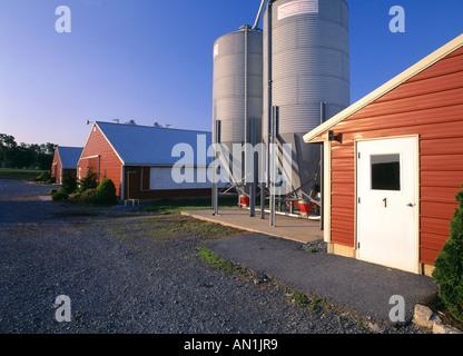 OUTSIDE VIEW OF BROILER HOUSES 414 FEET LONG LANCASTER COUNTY PENNSYLVANIA - Stock Photo