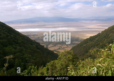 View into Ngorongoro Crater from the southern ascent road, Tanzania - Stock Photo
