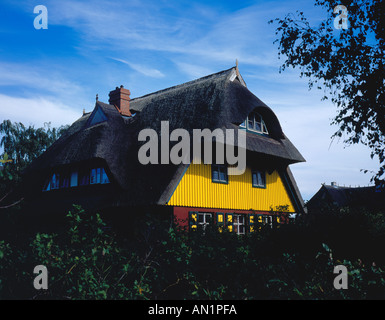 traditional Darss house at Wieck Darss Mecklenburg Vorpommern Baltic Sea Germany Europe. Photo by Willy Matheisl - Stock Photo