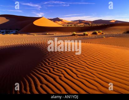 rote Duenen im Sossusvlei Namib Naukluft Park Namibia Afrika red dunes at Sossusvlei Namib Naukluft Park Namibia - Stock Photo