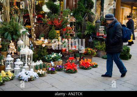 colourful christmas flower decorations and dried flower arrangements at a shop in vienna austria