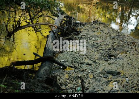 Floating debris on Des Plaines River - Stock Photo