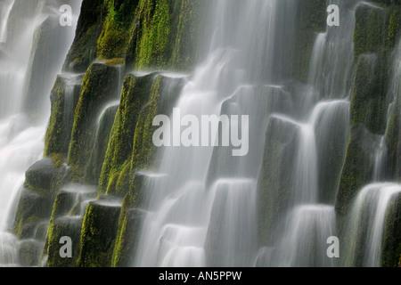 Proxy Falls detail - Stock Photo