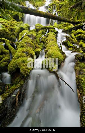 Upper Proxy Falls detail - Stock Photo