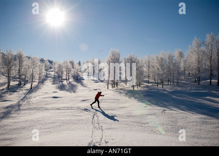 In the scenic Methow Valley near Wintrop Washington skiers enjoy a variety of Nordic winter sports opportunities. - Stock Photo