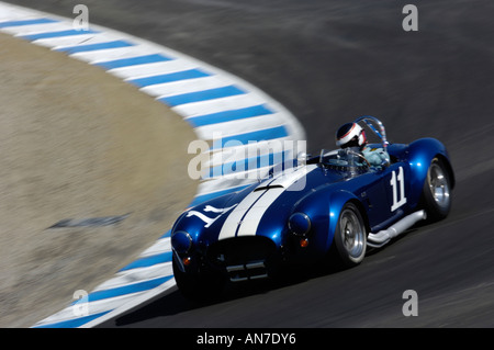 Harley Cluxten drives his 1965 Ford Cobra 427 at the 2006 Monterey Historic Automobile Races - Stock Photo