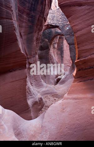 Slot canyon - Stock Photo