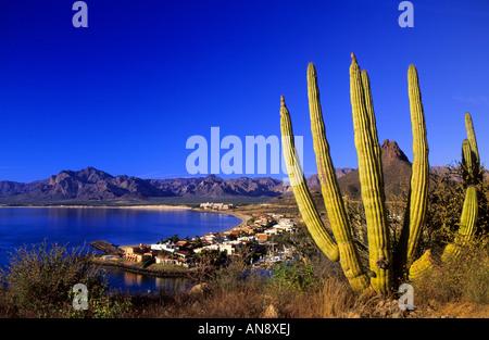 Playa Algodones Bay San Carlos Mexico Stock Photo Royalty