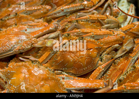 Fresh cooked blue swimmer crabs for sale at Sydney Fish Market Darling Harbour Australia - Stock Photo