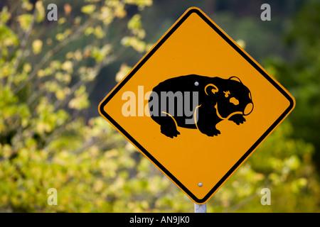 Wombat road warning sign near Wollombi Australia - Stock Photo
